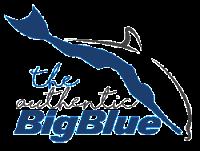 "To 2o Authentic Big Blue άρχισε επίσημα τη Δευτέρα 17/9 με 64 αθλητές από 18 χώρες να βουτούν στο ""απέραντο γαλάζιο"" της Αμοργού. Ήδη τις δύο πρώτες αγωνιστικές μέρες έχουν σημειωθεί 7 εθνικά ρεκόρ"